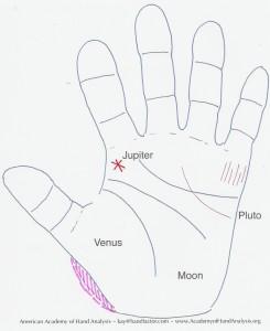 AAHA Hand Map