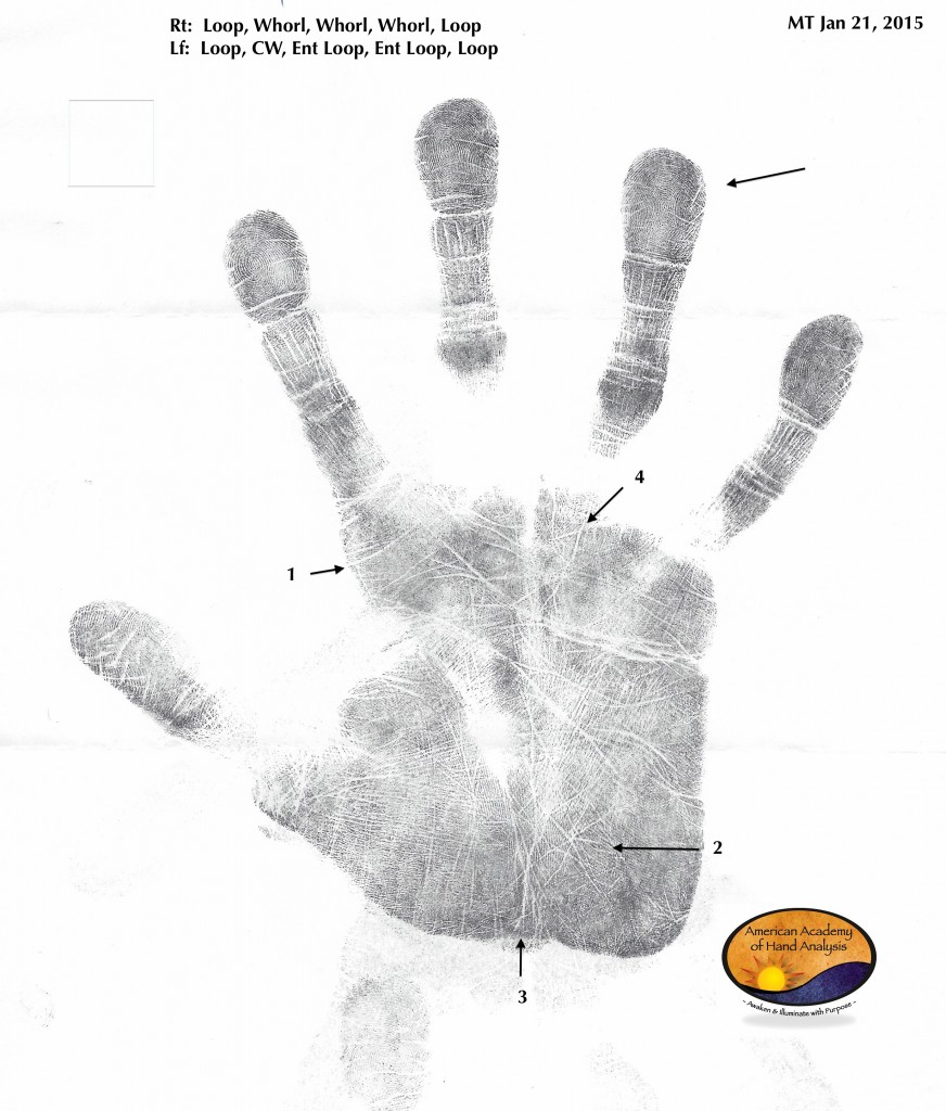 Handprint 1 Jan 2015