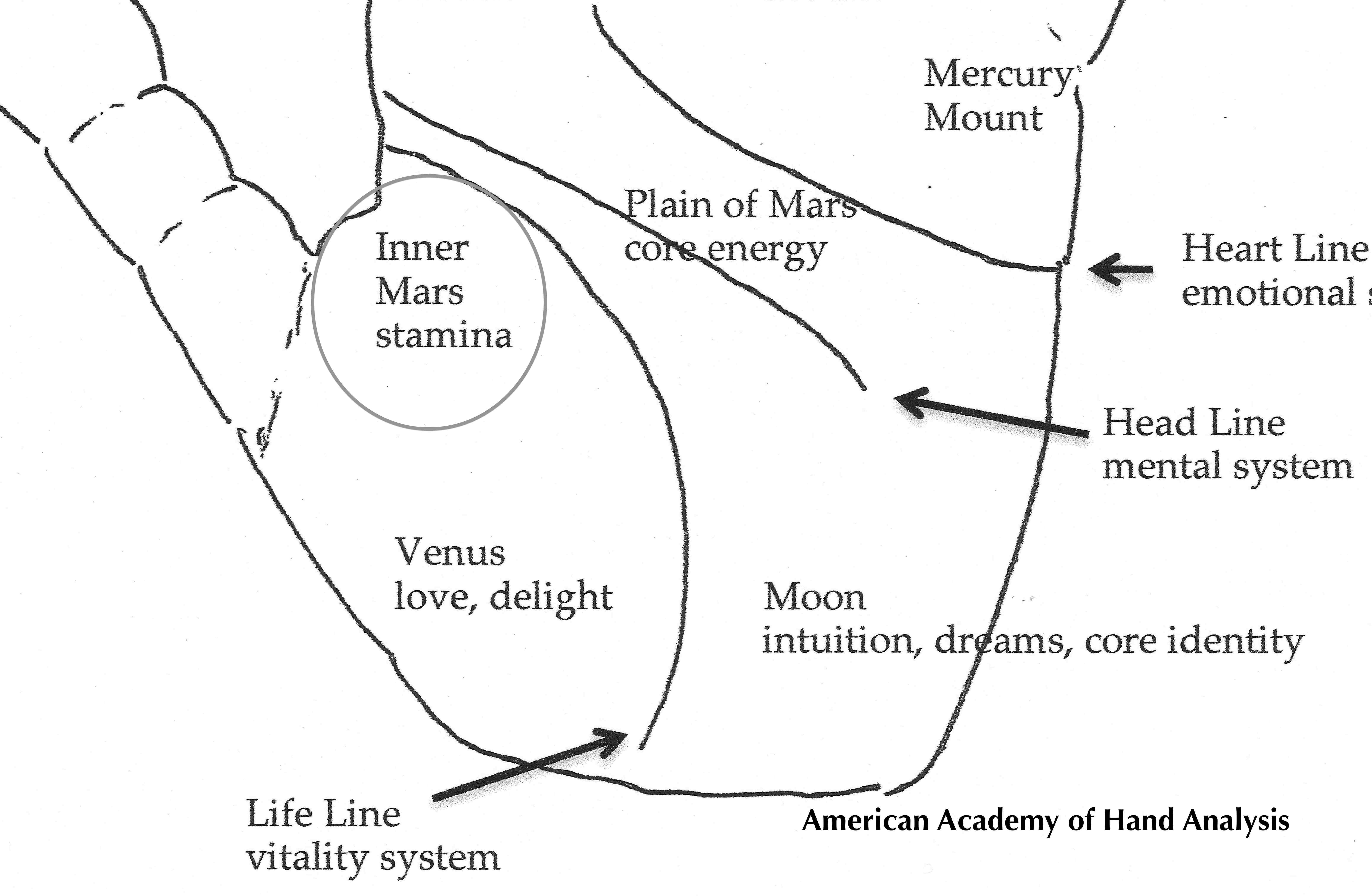 Mars Zone